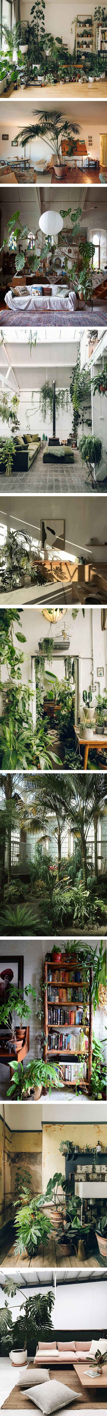 10 different ways of creating an indoor jungle at home